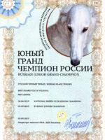 Диплом BGVV. Юный Гранд Чемпион России