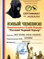 Диплом BGVV. Юный чемпион НКП
