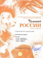 Диплом BGVV. Юный чемпион России